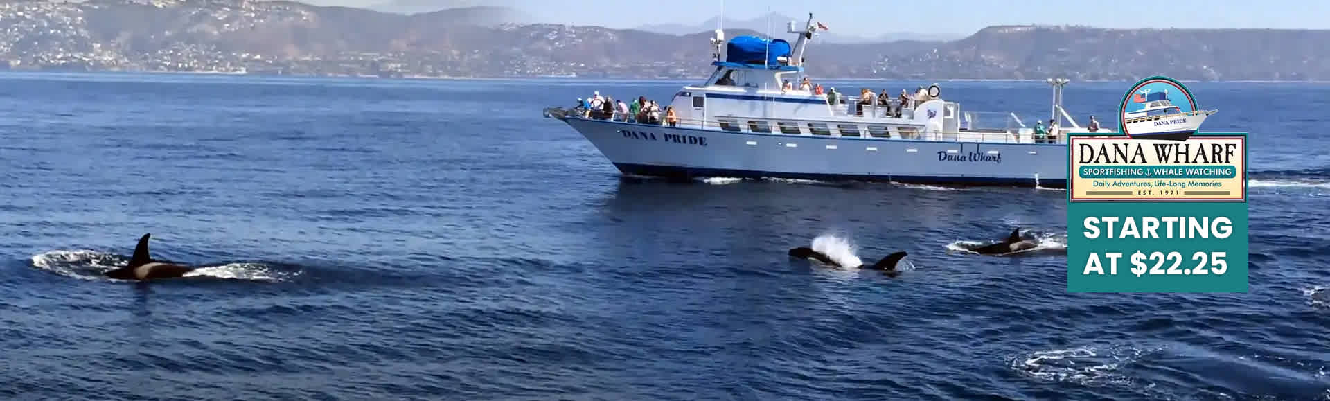 Dana Wharf Sportfishing, Whale Watching & Wine Cruises Discounted Tickets