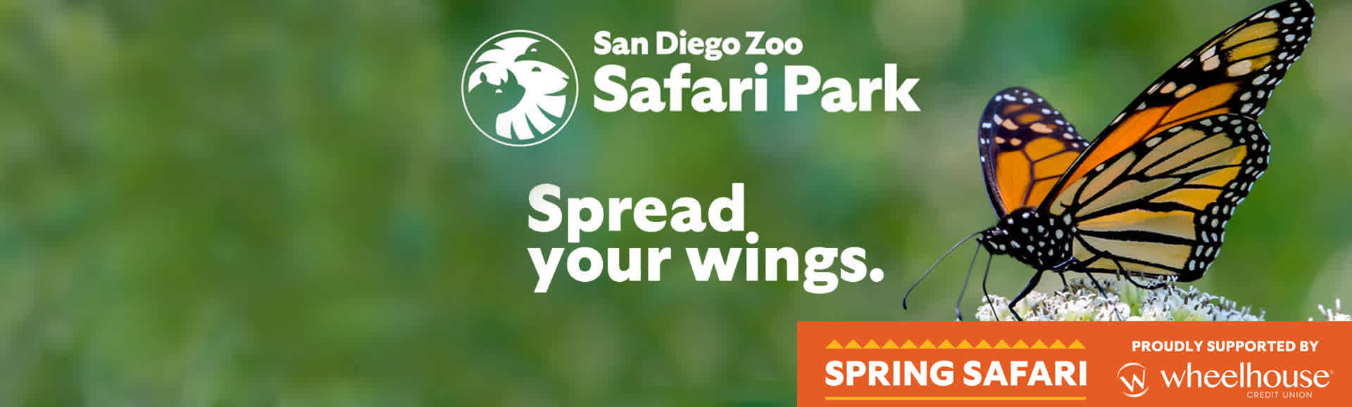 Safari Park Discounted Tickets
