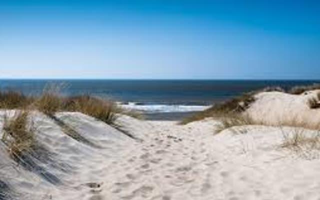Bijna vol! Nog plek voor 1 heer!!  - Wandeling Meyendel - duin en strand - Love Worx - alle leeftijden