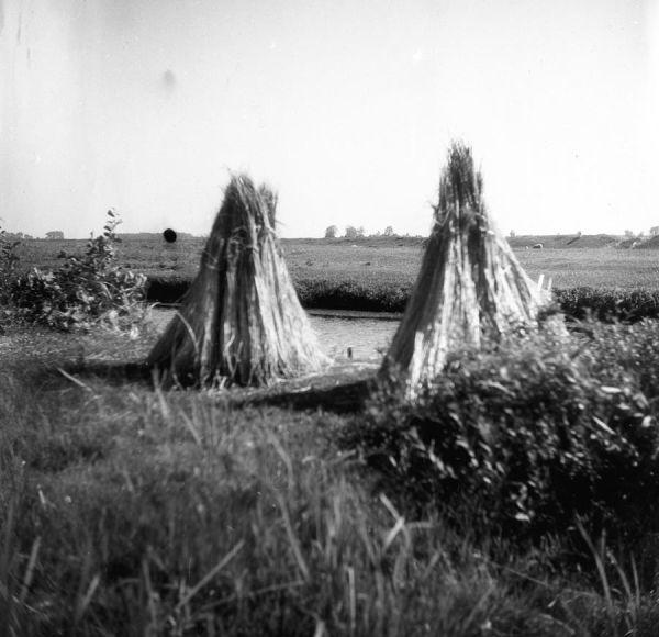 Suszenie imiędlenie konopi, Muzeum Archeologiczne iEtnograficzne wŁodzi