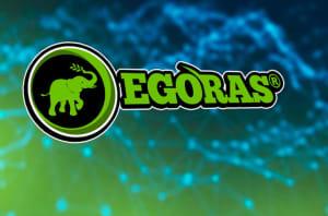 egoras-raises-1-3m-from-investors-in-private-round