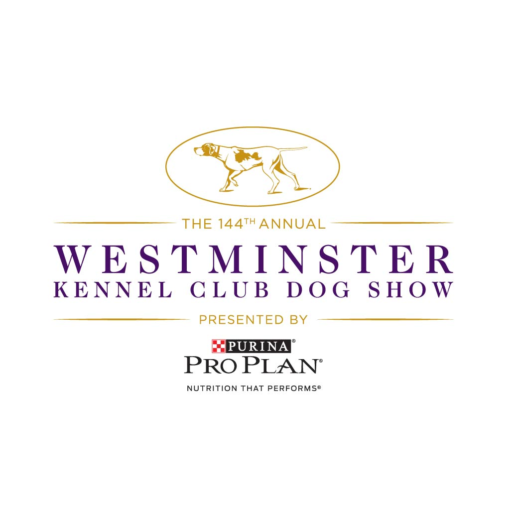 Westminster Dog Show 2020 Dates.Letter From The Show Chairman Of The Westminster Kennel Club