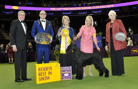 2018 Reserve Best In Show Image