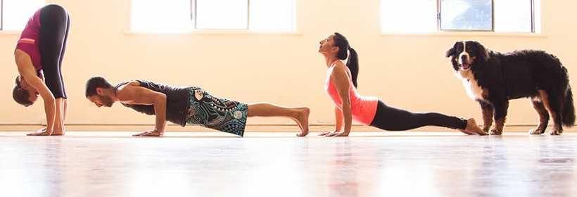 Ihana Yoga St Kilda Melbourne cover image