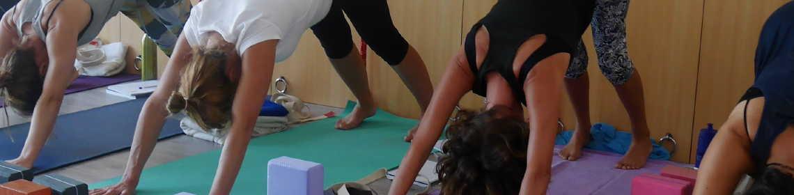 Kaya Yoga Teacher Training School cover image