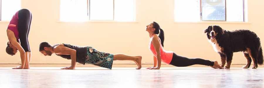 Ihana Yoga St Kilda Melbourne,St Kilda