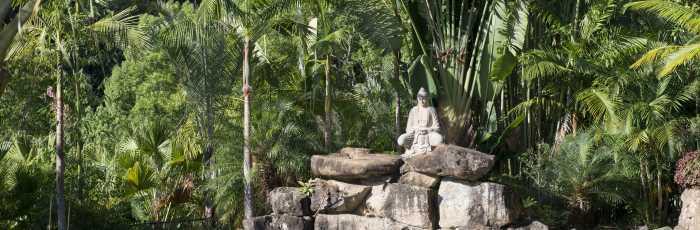 Eco Yoga Retreat in the Byron Bay Hinterlands,Uki