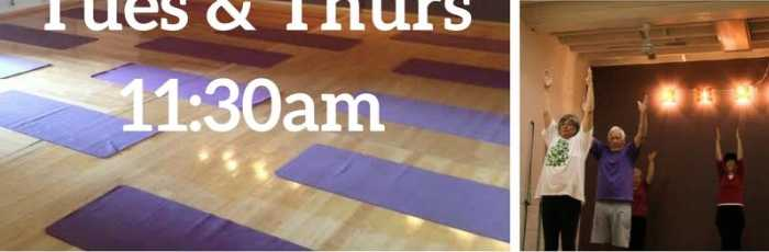 Yoga for Seniors 60+,Petersham