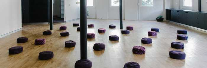Yin Yoga/Insight Yoga Teacher Training Intensive Primary Level with Sarah Powers,Surry Hills