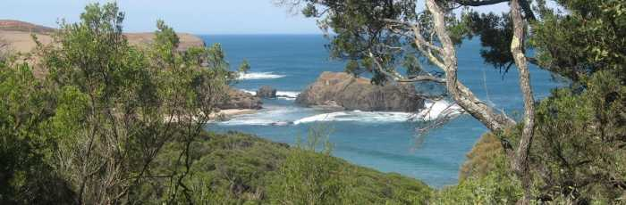 Come for a hike with us to Bushrangers Bay, Cape Schanck,Moorabbin