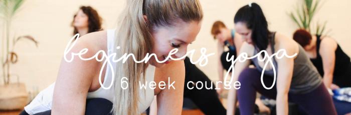 6 Week Beginners Yoga Course,Holland Park West