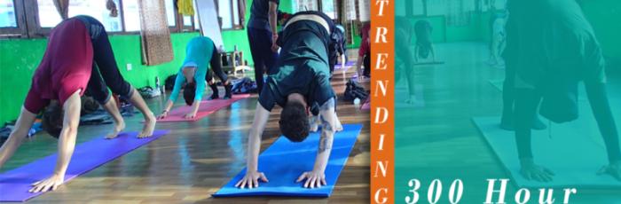300 Hour Yoga Teacher Training - July 2019,Rishikesh