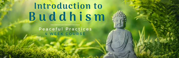 Introduction to Buddhism: 4 Week Course,Bedfordale