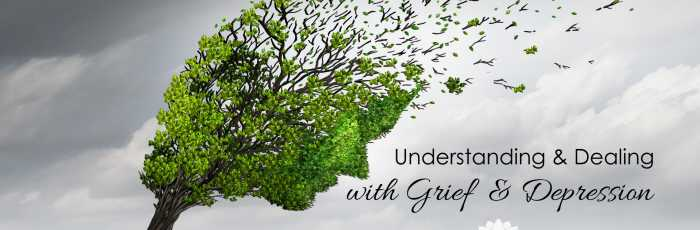 BOOK OUT - Understanding & Dealing with: Grief & Depression,Bedfordale