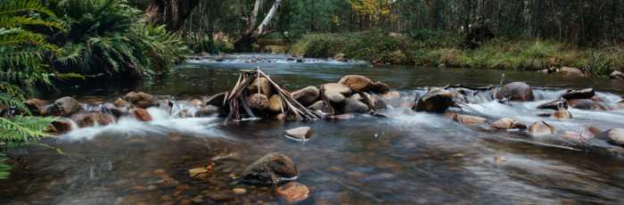 Return to Wellness: Spring Reawakening 3 day retreat,Marysville