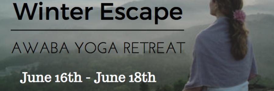 The Best Fifty Yoga Events In Wynyard Tas