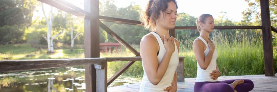 Vinyasa Yoga Teacher Training (200 HR),Eungella