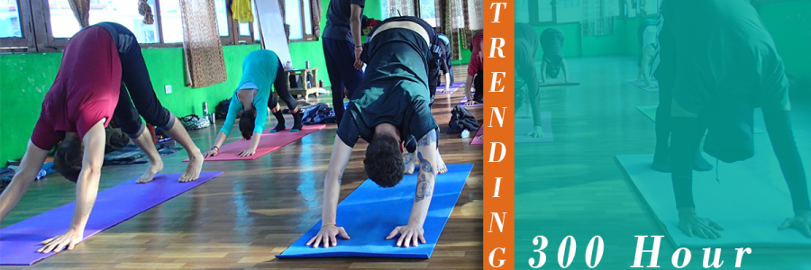 300 Hour Yoga Teacher Training - May 2019,Rishikesh