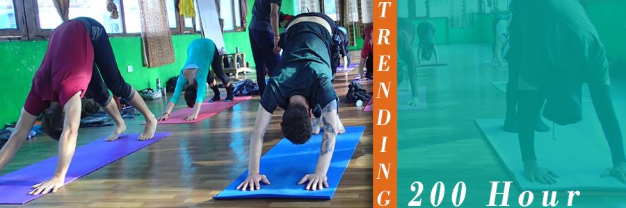200 Hour Yoga Teacher Training - May 2019,Rishikesh