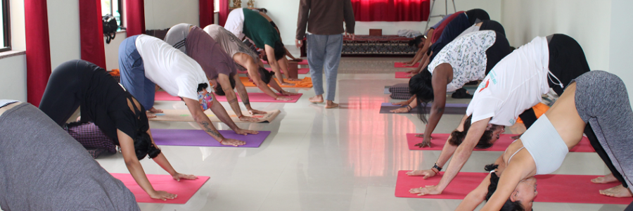 500 Hour Yoga Teacher Training in Rishikesh,Rishikesh
