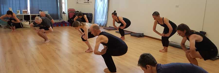 Free Shadow Yoga Class and Introduction Hatha Yoga Desha,Leichhardt