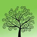 Dani Kerlin- The Birthing Tree logo