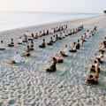 Hot Yoga Teacher Training with Jimmy Barkan 05th Feb - 22nd 2015 Melbourne logo