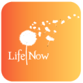 Life Now Yoga logo
