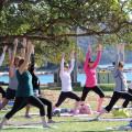 Mosman Yoga Co-op logo