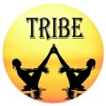 Tribe Level 1 & 2 One Month Residential Yoga Teacher Training Courses logo