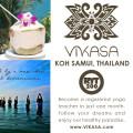 Vikasa Yoga  logo