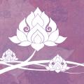 Suttabuut Yoga logo