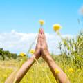 Spring Wellness Retreat