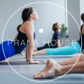 Beginner Yoga with Julie Gargano | 10 Week Course