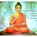 5 week meditation course