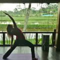 5 Night Viroga Yoga Retreat Holiday Ubud Bali