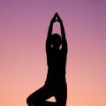 Introduction to Vinyasa Yoga 8 Week Winter Course
