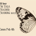 Yin Yoga Teacher Training 100 hr