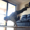 Inversions & Hand balancing - 5 week course