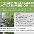 Bryan Kest Power Yoga Teacher Training & Yoga Practice Immersion