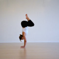 Transitions & Inversions Workshop