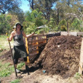 Practical Compost & Worm Farming