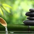 Hatha Yoga Cleanse Day