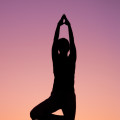 Introduction to Vinyasa Yoga 8 Week Winter Course