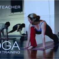 Life and Balance Yoga Teacher Training logo