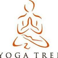 Yoga Tree logo