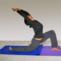 Yoga with Nalini  logo