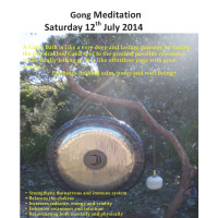 Upcoming Gong in Sydney