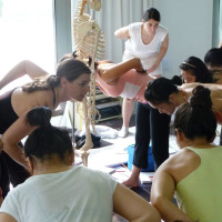 STRUCTURAL YOGA THERAPY COURSE