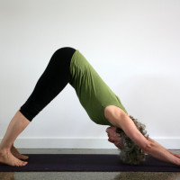 Unley Yoga - 6 week Introductory to Iyengar Yoga